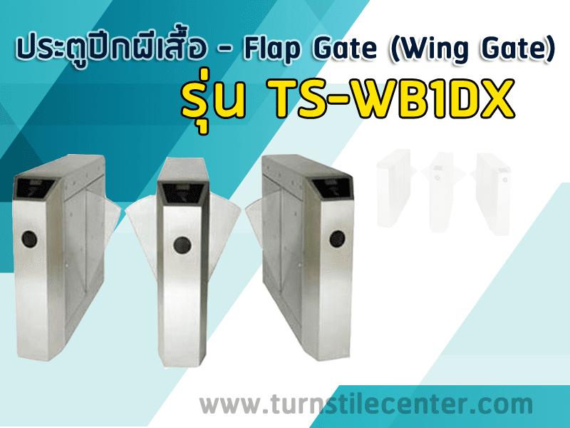 ประตูปีกผีเสื้อแบบรถไฟฟ้า BTS รุ่น TS-WB1DX